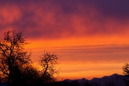 bei morgendämmerung, natur, bäume, sunrise, beziehung, trennung, worte, das ende der liebe, erinnerung, vergänglichkeit, melancholie, bild, foto, wortzeitlos blog